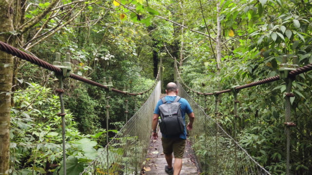 vídeos de stock e filmes b-roll de hiker passing through a rope bridge in jungle, lost waterfalls trail of boquete - ponte suspensa