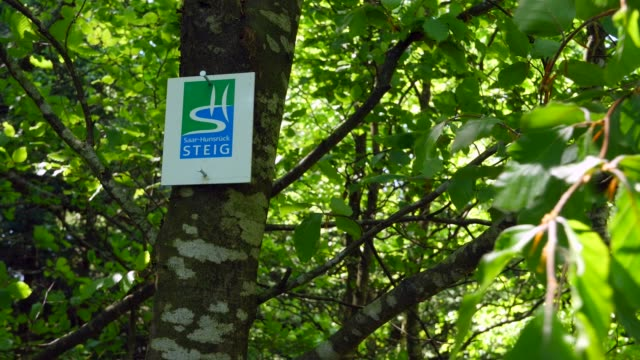 stockvideo's en b-roll-footage met hiker signs at mount erbeskopf, hunsrueck, rhineland-palatine, germany, europe - informatiebord