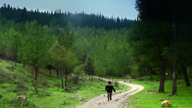 a hiker walks down a curving road in the biria forest. - israel stock-videos und b-roll-filmmaterial