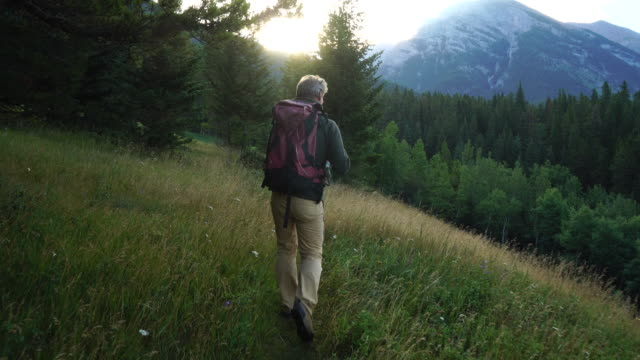 Hiker walks through meadow, looks out across mountains and forest
