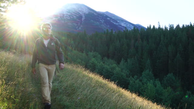 hiker walks through meadow, looks out across mountains and forest - approaching stock videos & royalty-free footage