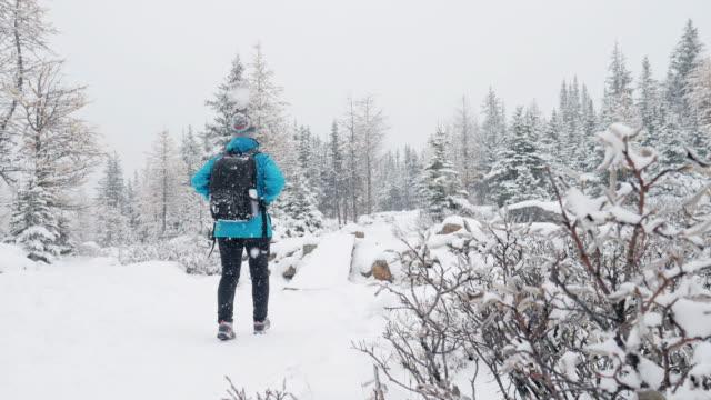 vídeos de stock e filmes b-roll de hiker woman trekking on fresh winter snow in pine forest - cavalgada de lazer