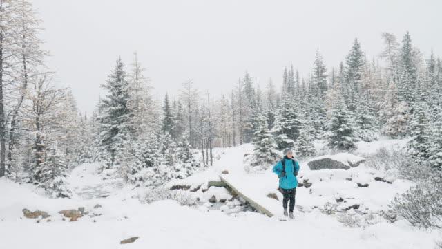 松林の中の新鮮な冬の雪のトレッキング ハイカー女性 - 外乗点の映像素材/bロール