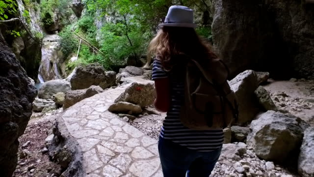 hiker woman walking trough a forest - yosemite national park stock videos and b-roll footage