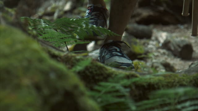 hikers feet - lypsekyo16 stock videos and b-roll footage