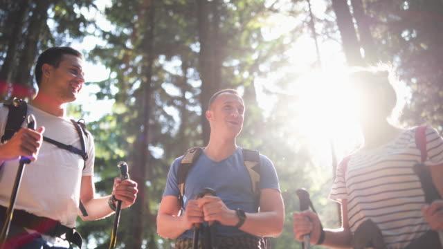 vídeos de stock e filmes b-roll de hikers in forest - 20 24 anos