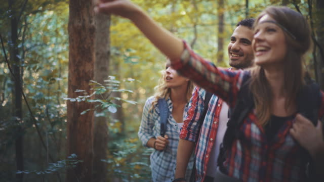 hikers in forest. - weekend activities stock videos & royalty-free footage