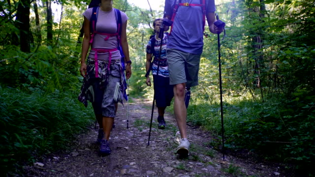 hikers in forest - amputee stock videos and b-roll footage
