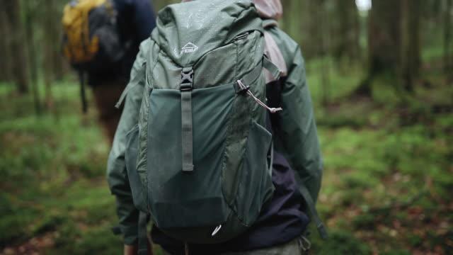 森の雨の日の冒険にハイカー - バックパック点の映像素材/bロール