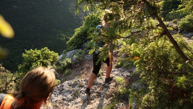 hikers walk along forest path above valley, hills - liguria stock videos & royalty-free footage