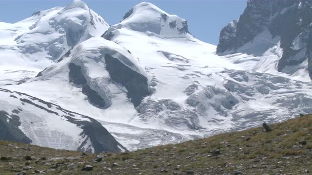 vídeos y material grabado en eventos de stock de ms hikers walking in front of monte rosa mountain / zermatt, valais, switzerland - bastón de senderismo
