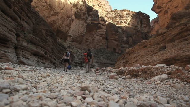 ws hikers walking in grand canyon / grand canyon village, arizona, usa - grand canyon national park video stock e b–roll