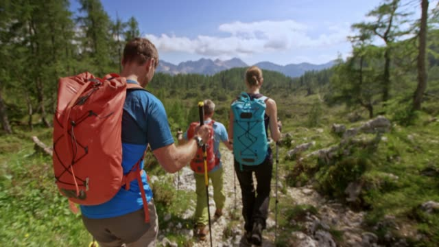 hikers walking on a mountain path in sunshine - hiking pole stock videos and b-roll footage