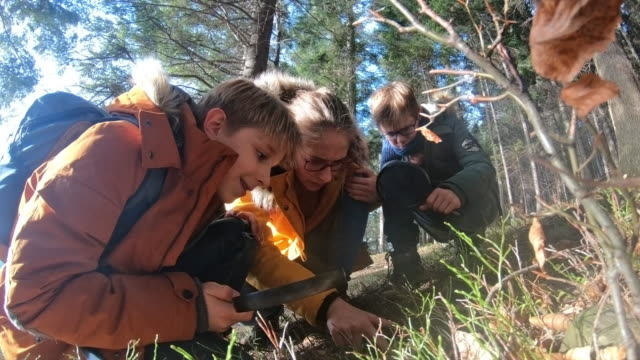 hiking children observing nature - imgorthand stock videos & royalty-free footage