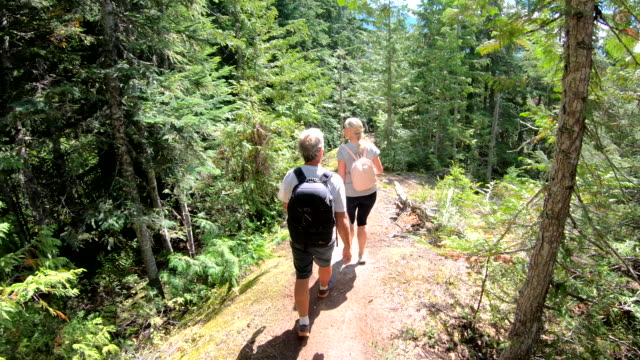 hiking couple descend through mature forest - mature couple stock videos & royalty-free footage