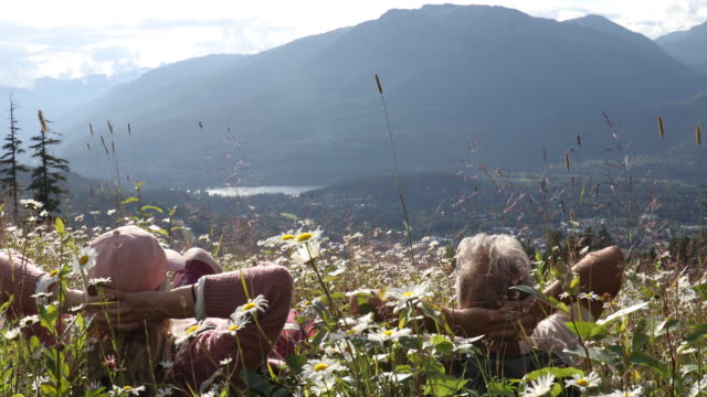hiking couple relax in mountain meadow of daisy flowers - lying on back stock videos & royalty-free footage
