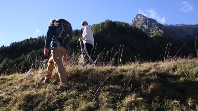 Hiking couple walk into mountain meadow, towards sunrise