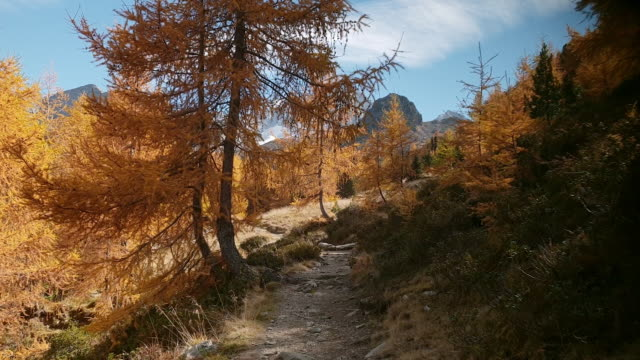 hiking in alpine mountain range in autumn - walking point of view stock videos & royalty-free footage