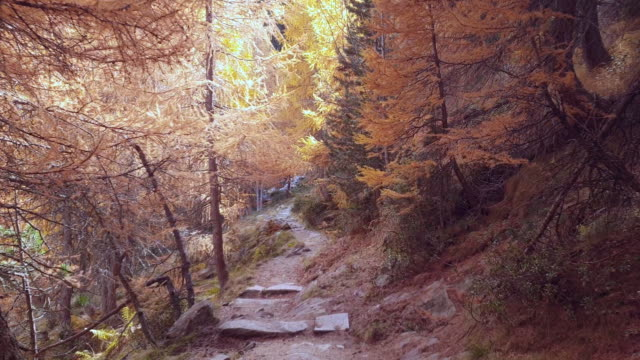 Wandern im alpinen Gebirge im Herbst