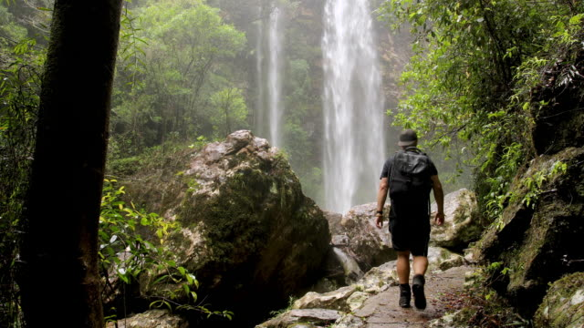 hiking in australian rainforest walking towards epic waterfall - lush stock videos & royalty-free footage