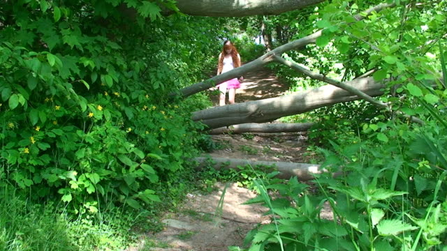 hiking in forest - one teenage girl only stock videos & royalty-free footage