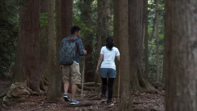hiking in kyoto - lypsekyo16 stock videos and b-roll footage
