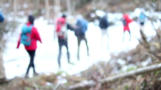 hiking in line - field trip stock videos & royalty-free footage