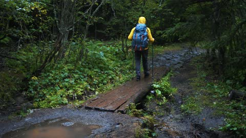 hiking in rainy day - full length stock videos & royalty-free footage