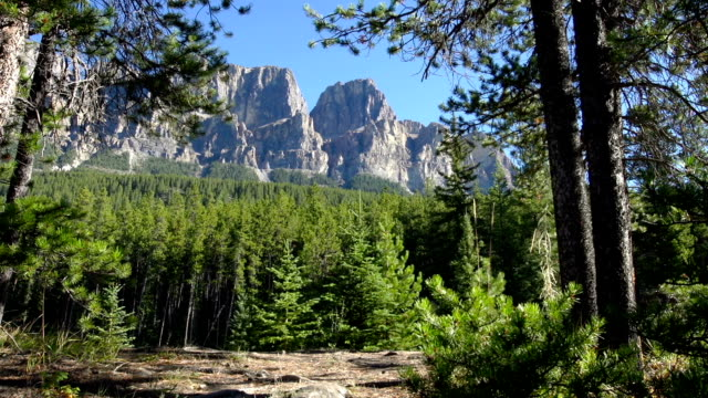 Hiking in Rocky Mountains