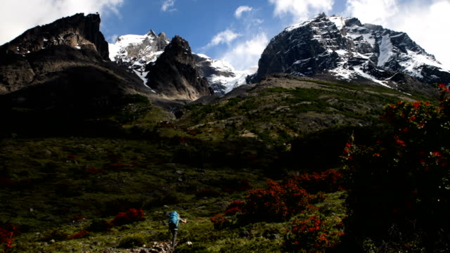 Hiking in Torres del Paine National Park