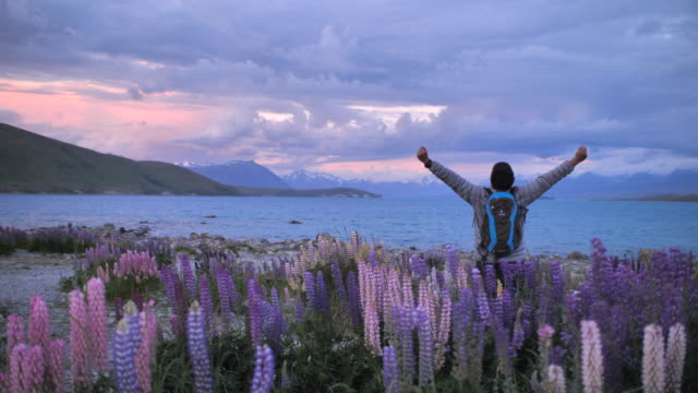 hiking mountain on the tekapo lake raising hands in sunset - one man only stock videos & royalty-free footage