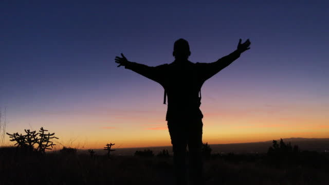 hiking nature landscape - cactus silhouette stock videos & royalty-free footage