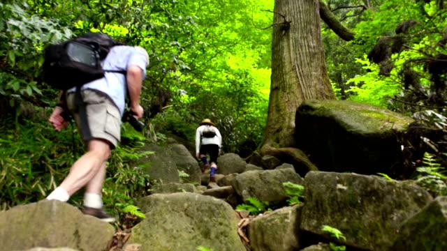 自然をハイキング