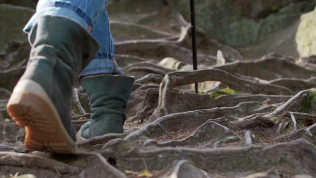 hiking, przadki, poland - hiking pole stock videos & royalty-free footage