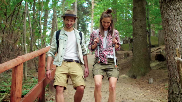 hiking, przadki, poland - tourist点の映像素材/bロール