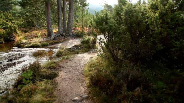 Hiking trail Scotland glidecam shot