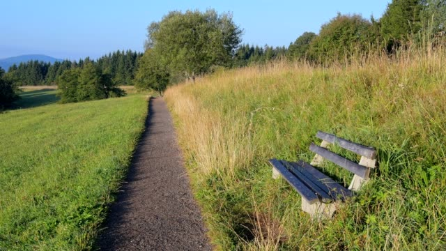 hiking trail with bench in the morning, schauinsland, freiburg im breisgau, black forest, baden-württemberg, germany - baden wurttemberg stock videos and b-roll footage