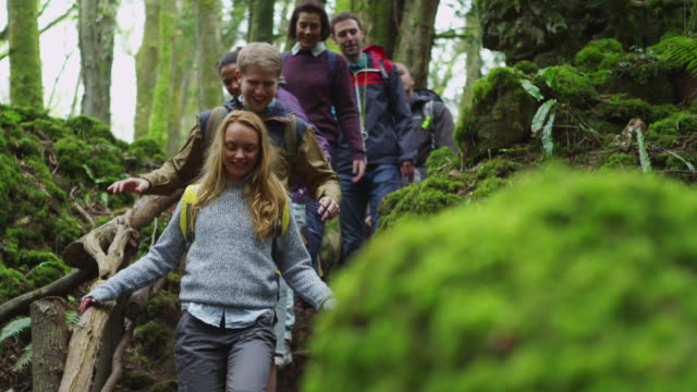 hiking trip - england stock-videos und b-roll-filmmaterial