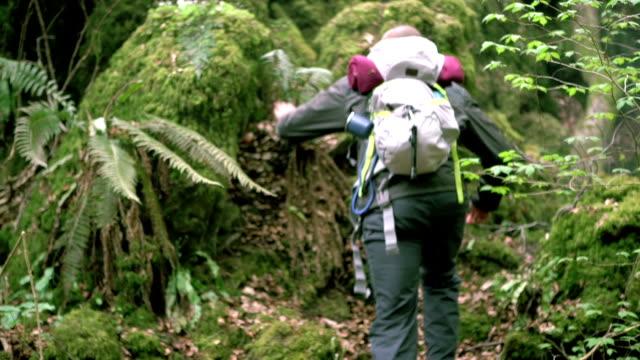 hiking trip - exploration video stock e b–roll