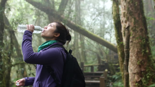 Hiking young woman trekking and drinking water in rainforest, 4K (UHD)