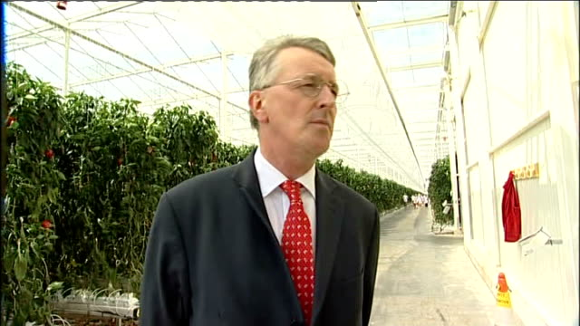 int hilary benn mp interview sot reporter to camera from vegetable patch in back yard - hilary benn stock-videos und b-roll-filmmaterial