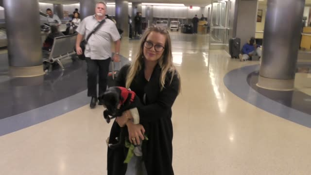 vídeos de stock e filmes b-roll de hilary duff carries her dog as she arrives at lax airport in los angeles in celebrity sightings in los angeles - celebridade
