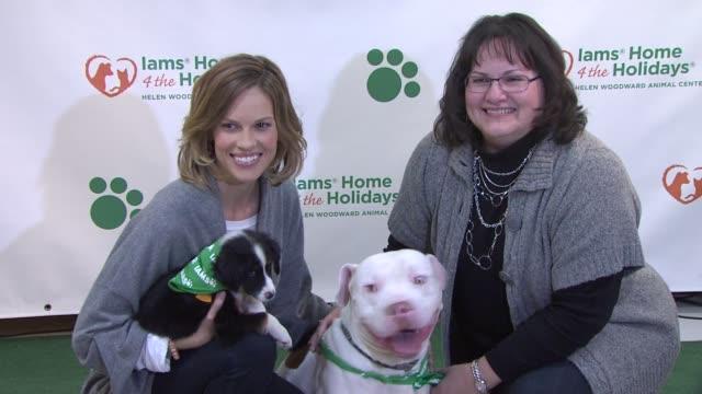 vidéos et rushes de hilary swank and judy swank at the hilary swank and iams home 4 the holidays raise awareness for pet adoption at new york ny. - adoption