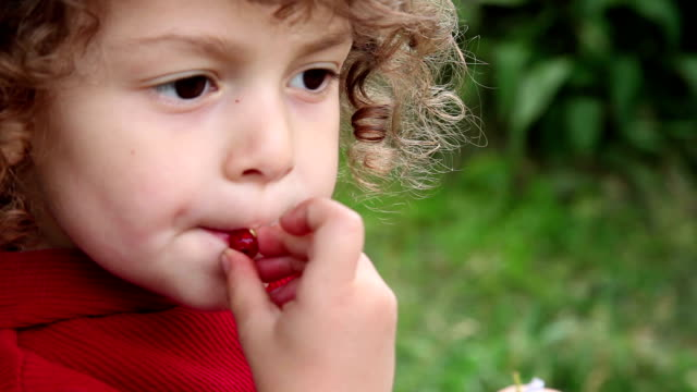 сhild tasting red berry - nuovo video stock e b–roll