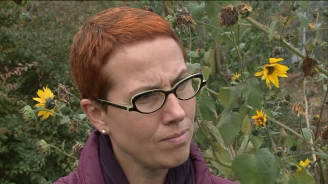 vidéos et rushes de hilda mechthild krus director of greenhouse horticultural therapy programs explains horticultural therapy for inmates at rikers island correctional... - psychiatrie