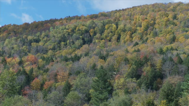 Hill In The Fall