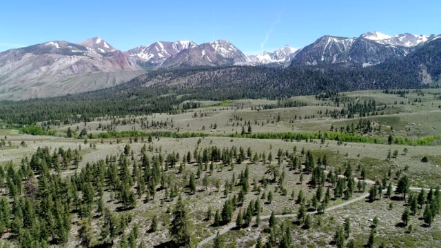 hills in mammoth lakes in the spring - mammoth lakes video stock e b–roll