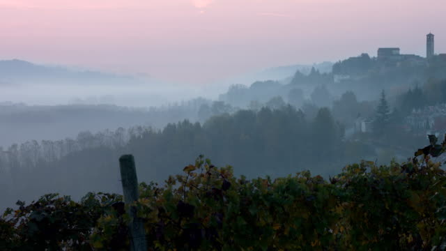 hills with colored vineyards covered by fog in early morning - piedmont italy stock videos & royalty-free footage