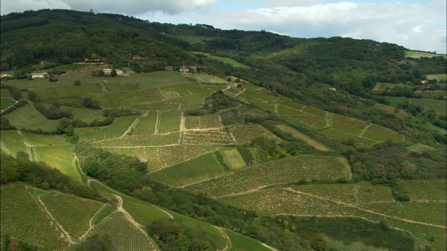 vidéos et rushes de aerial ws hilltop vineyards and surrounding landscape / beaujolais region, france - plan large