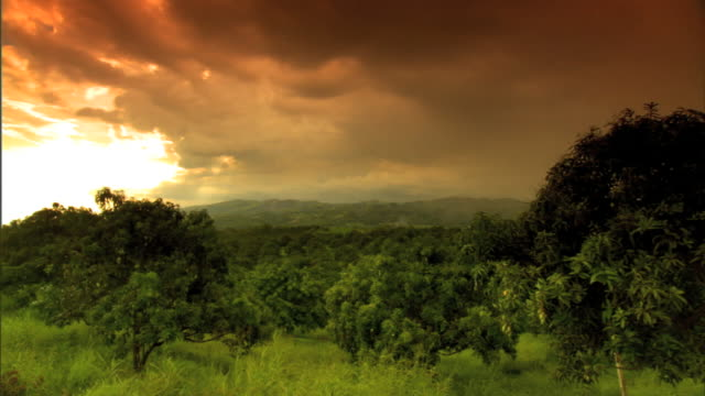 hd hilltop xws green forested hills in low cloud cover time lapse clouds moving away then together air mass changing direction weather southeast asia - philippines stock videos & royalty-free footage